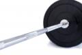 TRINFIT 120 kg Bumper training detail